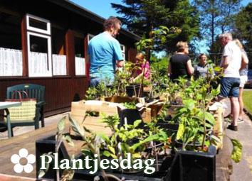 Plantjesdag